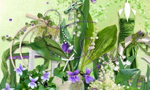 花卉植物绿叶边框等欧美剪贴素材