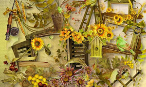 树叶边框梯子小鸟等欧美剪贴素材