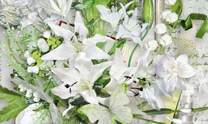 百合花朵丝带小鸟等欧美剪贴素材