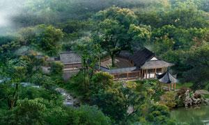 茂密树林与亭台假山等园林设计图片