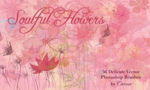 唯美温馨的花朵花卉笔刷