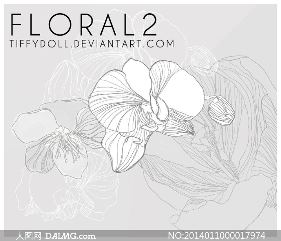 中国风线描花朵装饰笔刷高清图片