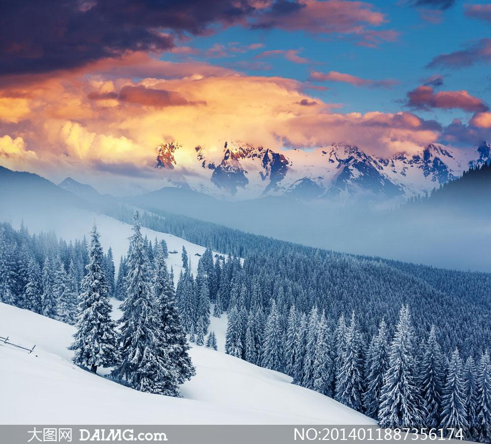 山峦云层与寒带针叶林摄影高清图片
