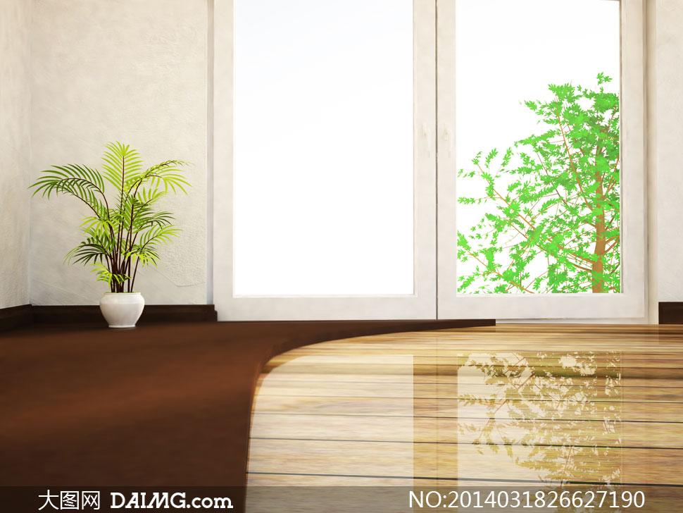 窗外的树木与盆栽植物创意高清图片