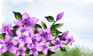 手绘风格紫色花朵植物PSD分层素材