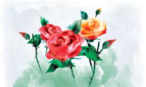 月季花與水彩墨痕背景PSD分層素材