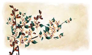 水彩背景與枝頭上的花PSD分層素材