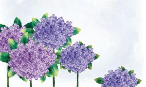 紫花朵與綠色葉子植物PSD分層素材