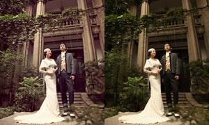 婚紗照片古典冷色效果PSD調色圖層