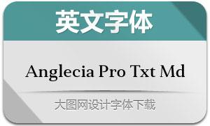 AngleciaProTextMedium(字体)