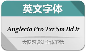 AngleciaProTextSmBdIt(英文字体)