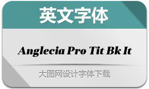 AngleciaProTitleBlackItalic(字体)