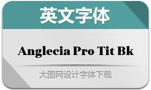 AngleciaProTitleBlack(英文字体)