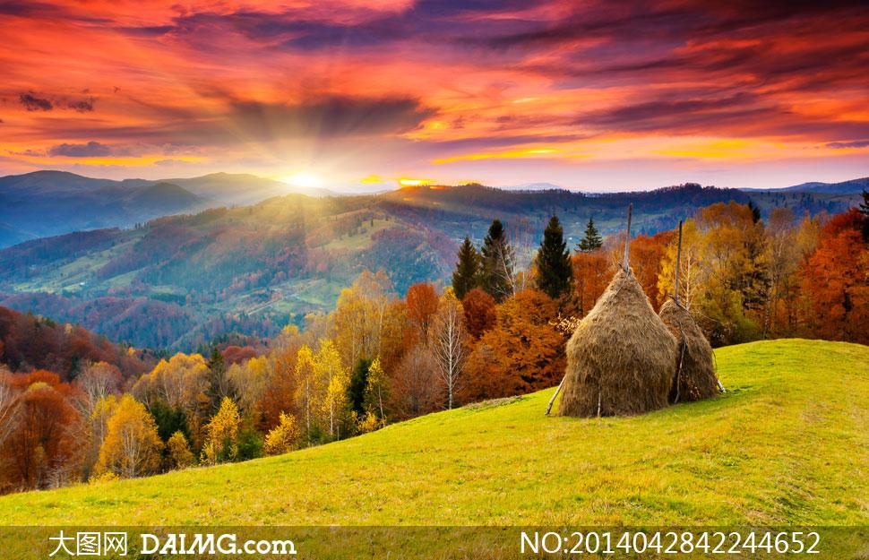 高清摄影大图图片素材自然风景风光草地阳光天空云彩云层多云光线树木