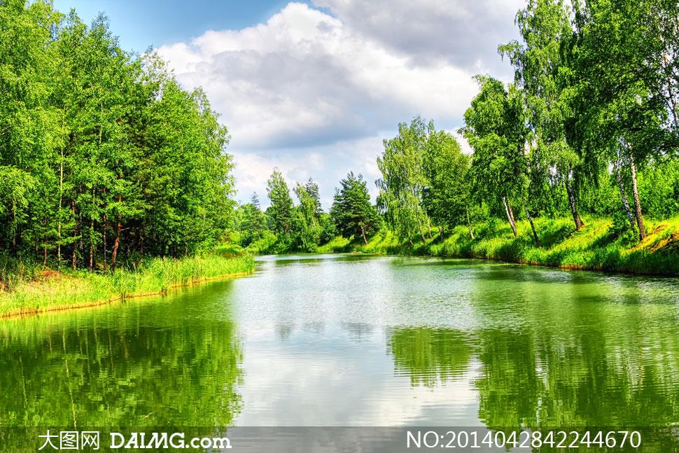 大树树林蓝天天空白云云彩云层多云水面湖面湖水涟漪绿树河水河流河岸
