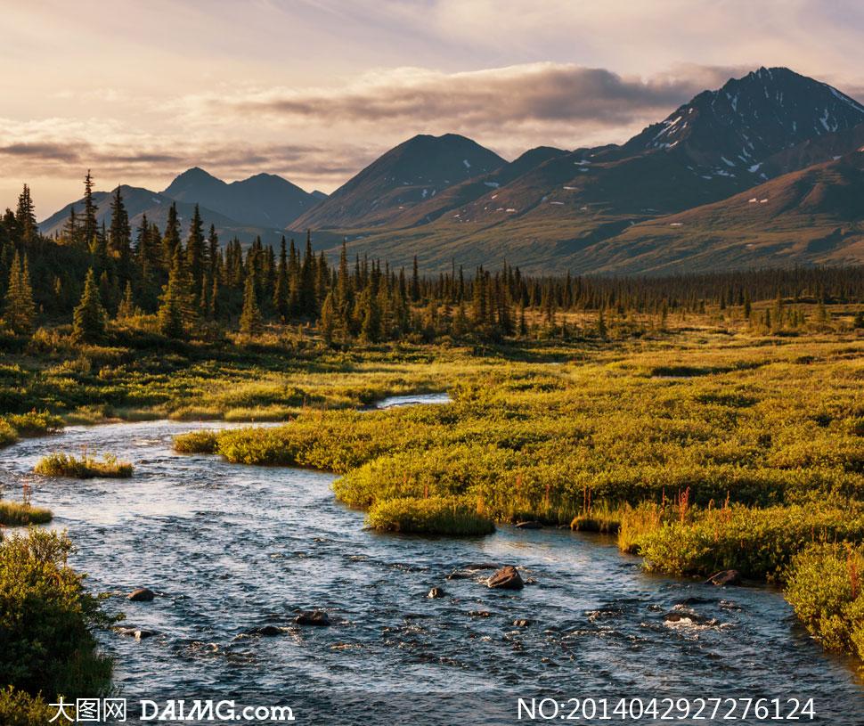 关键词: 高清摄影大图图片素材自然风景风光树木大树树林针叶林大山