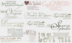 影楼婚纱写真相册装饰花体文字模板