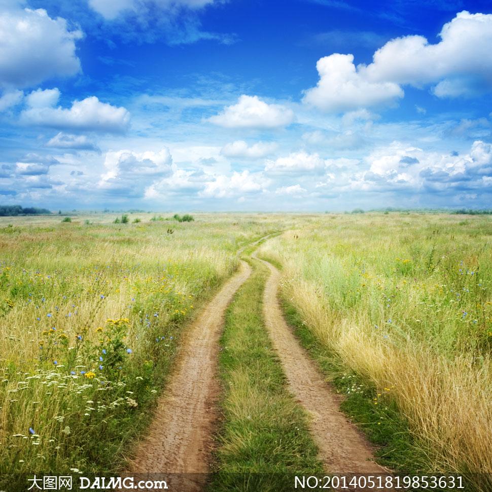蓝天白云小路草丛风景摄影高清图片