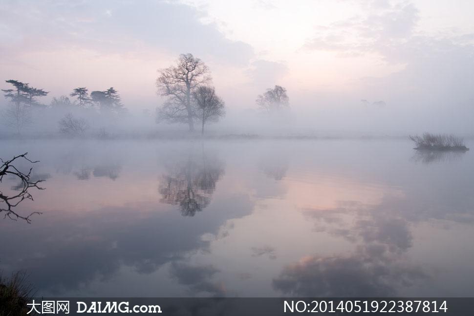 云彩与水中树木飞倒影摄影高清图片