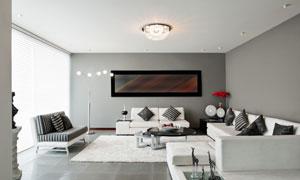 宽敞客厅沙发茶几灯具摄影高清图片