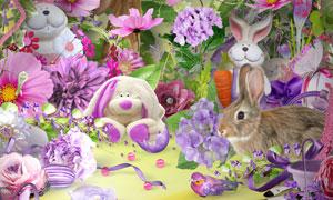 兔子缎带花朵与边框等欧美剪贴素材