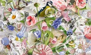 缎带花朵小鸟与纽扣等欧美剪贴素材
