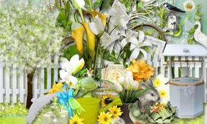 树枝小鸟鲜花与缎带等欧美剪贴素材