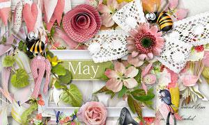 花枝小鸟蜜蜂与缎带等欧美剪贴素材