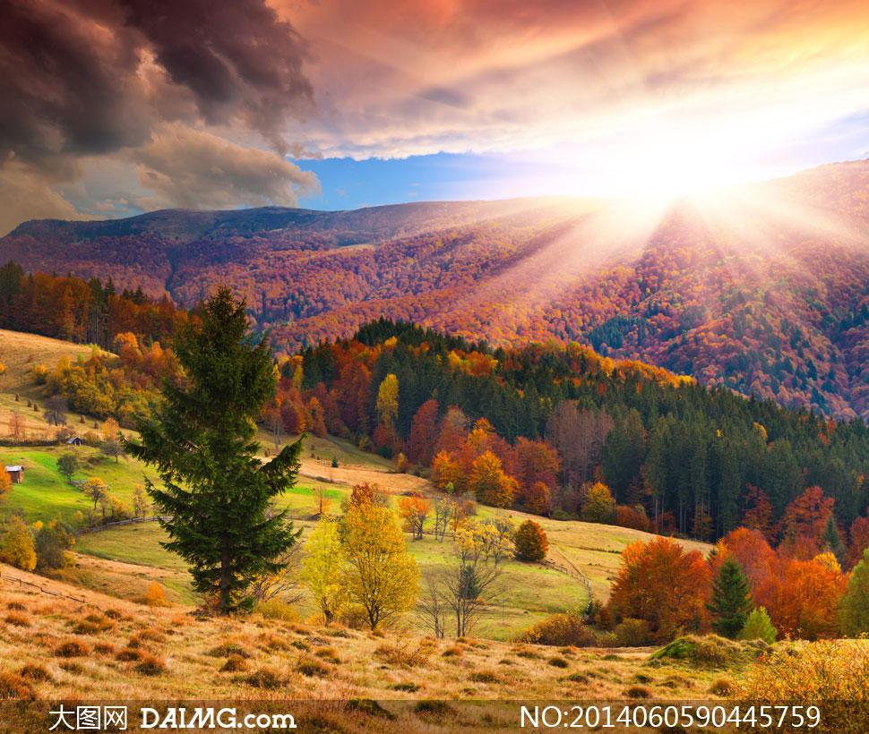 关键词: 高清摄影大图图片素材风景风光自然蓝天天空云彩云层多云树木图片