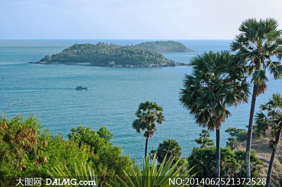高清摄影大图图片素材自然风景风光旅游树木大树水面海面海水海景大海