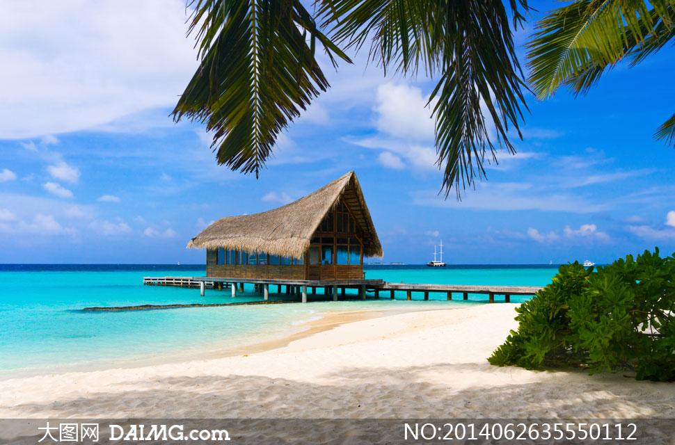关键词: 高清摄影大图图片素材自然风景风光旅游椰树树叶绿叶叶子房子