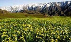 新疆额敏县旅游摄影图片