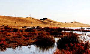 内蒙八道桥沙漠风光摄影图片