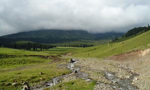 蓝天下的新疆鹿角湾摄影图片