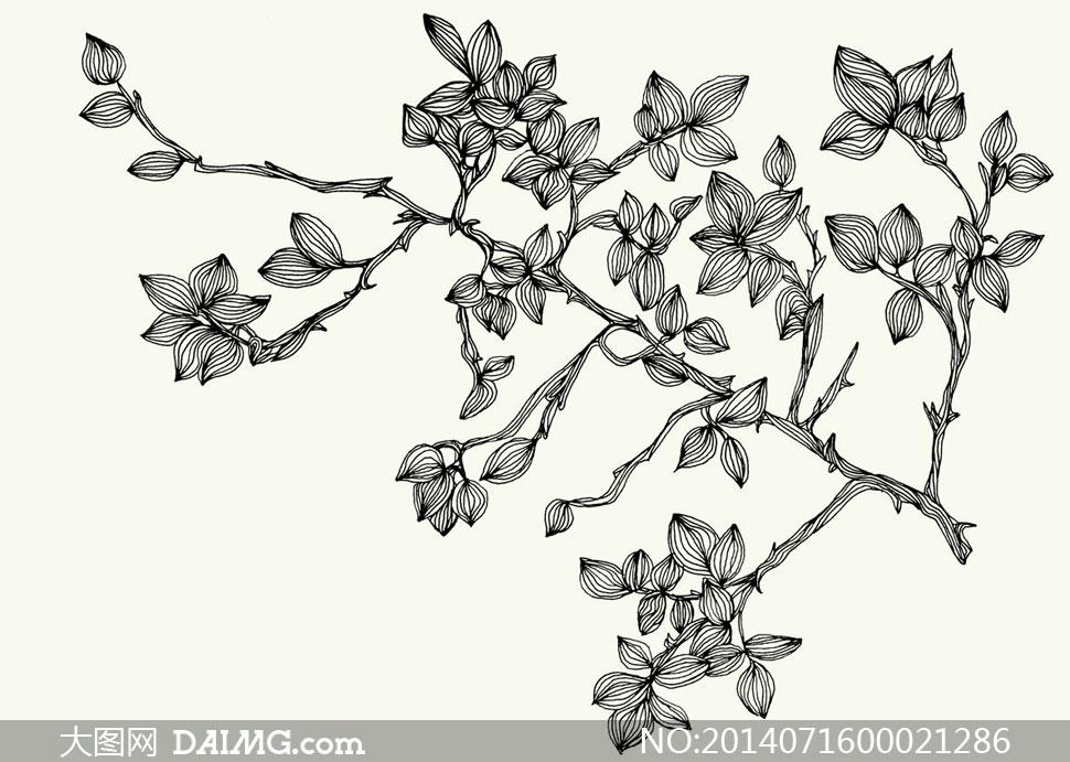 ps树藤素材_树藤素材,树藤边框素材简笔画图片