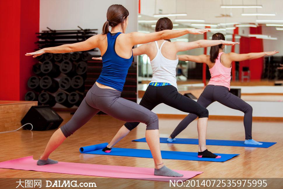 锻炼瑜伽木地板健身房背影背后背心蓝色白色粉红色