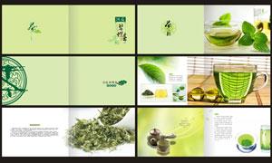 绿色简洁茶文化画册模板矢量素材