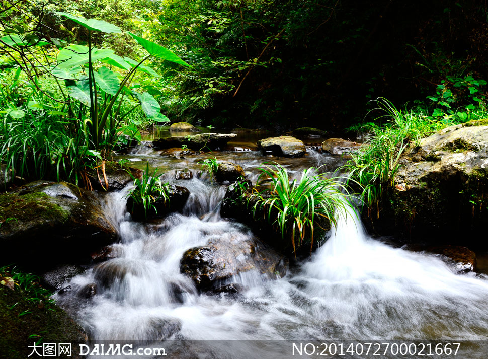 麒麟洞小溪流水摄影图片