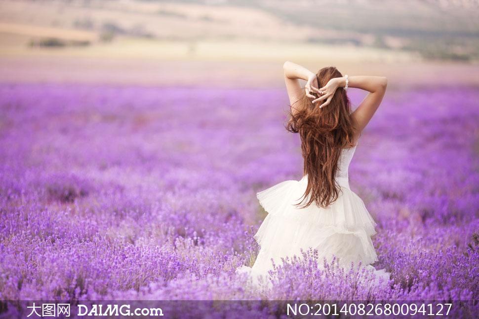 站在紫色花海中的新娘摄影高清图片 大图网设