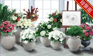 画架与摆着的花盆影楼摄影背景图片