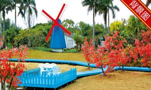 风车树木风景主题影楼摄影背景图片