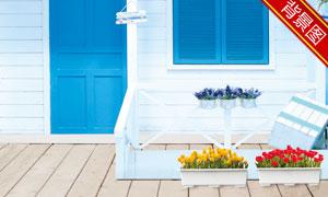 在房子前面的花盆影楼摄影背景图片