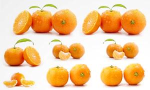 桔子图片 - 大图网搜索 - 高品质设计素材下载图片