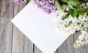 丁香花与空白卡片近景摄影高清图片