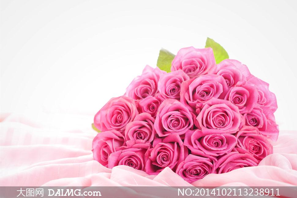 素材鲜花花朵花卉近景特写花束玫瑰花粉红色布艺布匹