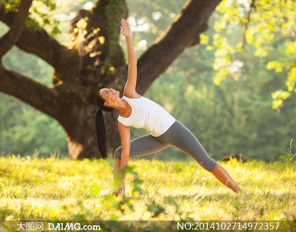 美女女人女性健身锻炼草丛草地微距大树树木灰色紧身