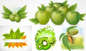 猕猴桃与青苹果等水果设计矢量素材