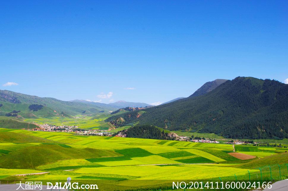 蓝天下的高原农田摄影图片