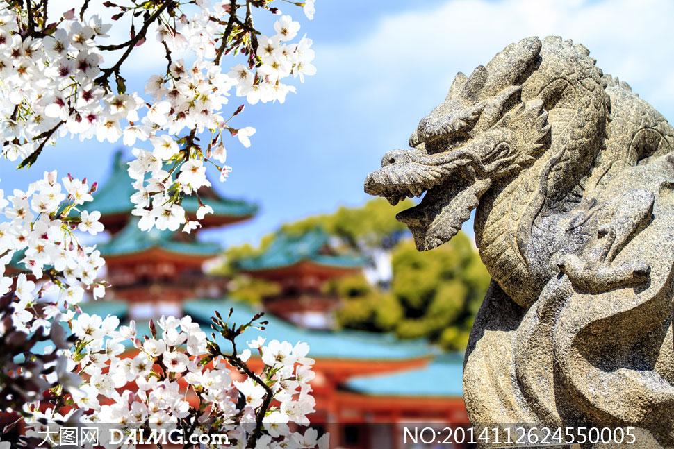 大树樱花春天争奇斗艳枝头花枝石雕微距近景特写鲜花