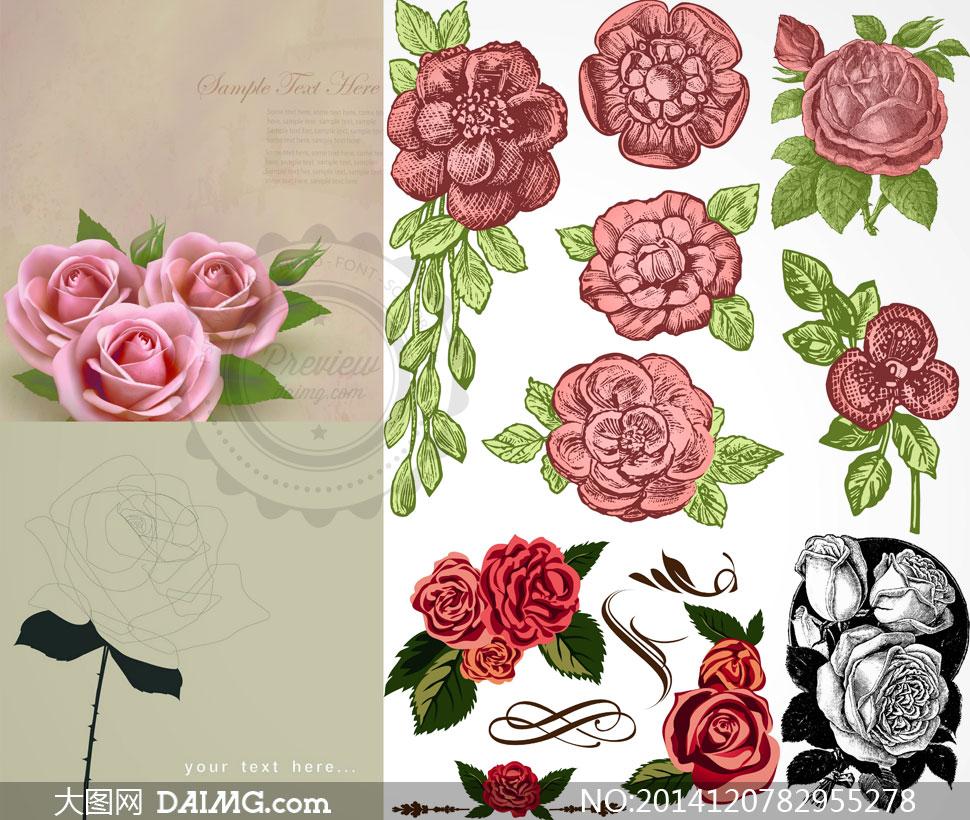 玫瑰花包子做法大全图解